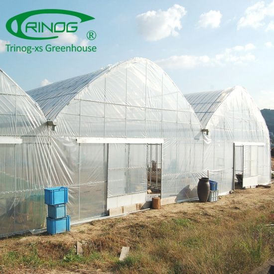Cheap commercial green house for cucumber hydroponics system