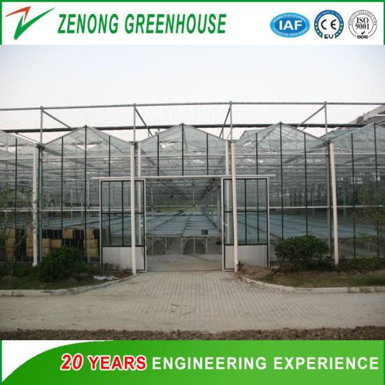 Venlo Glass Multi-Span Intelligent Green House for Horticulture/Flower Market/Ecological Restaurant
