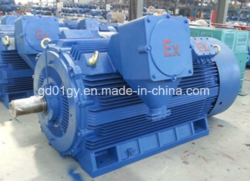 355~560 High Voltage 6kv/10kv, 2-8 Poles Three Phase Asynchronous Motors for Compressor pictures & photos