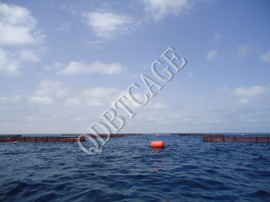 Aquaculture Fish Cages for Fish Farming in Volta Lake pictures & photos