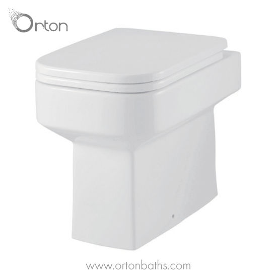China Bathroom One Piece Back to Wall Toilet with Rectangular Bowl