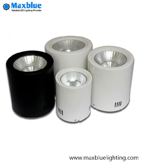 Hot Selling Surface Mounted LED Downlights with Ce RoHS SAA ETL