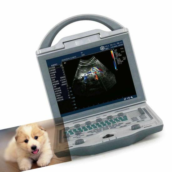 Kaixin Vet Portable Ultrasound Veterinary Equipment for Small Animals Pregnancy Test