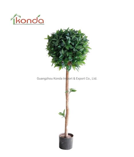 Factory Cheap Kinds of Plastic Mini Artificial Plant for Green Plant Wall Decoration