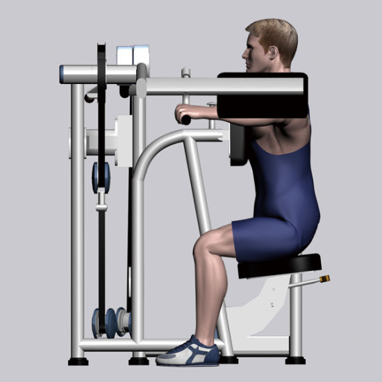 Fitness Equipment for Lateral Raise (SMD-1004) pictures & photos