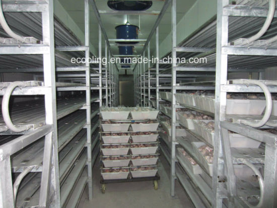 China Customized Big Volume Cold Storage for Large Size High