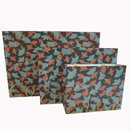 Handle Paper Bag for Packing or Shopping (SW108) pictures & photos