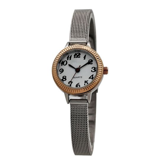 Round Case Mesh Band Two Tone Quartz Watch Women (HM2658)