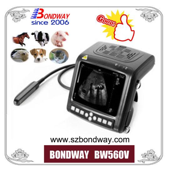 Hot Sales 4D Doppler Ultrasound Scanner for Veterinary