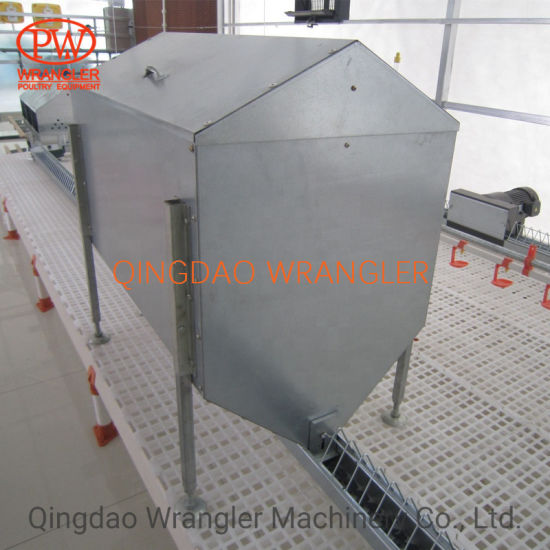 Poultry Automatic Feeder Chain Feeding System for Broiler and Breeder Hens
