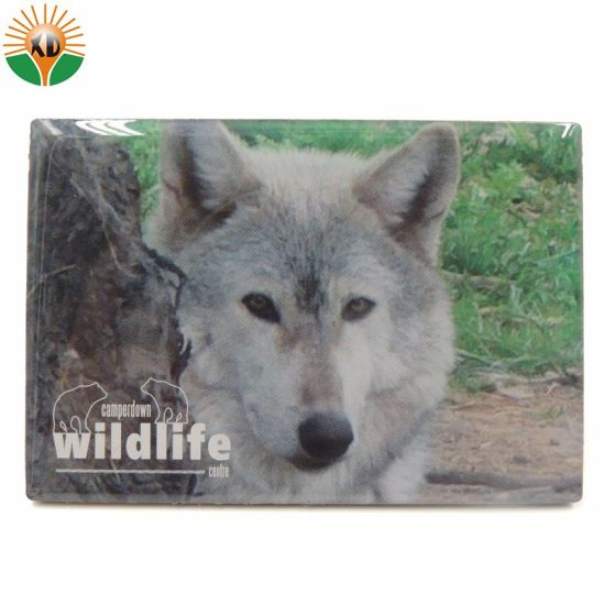 Custom Metal Souvenir Fridge Magnet pictures & photos