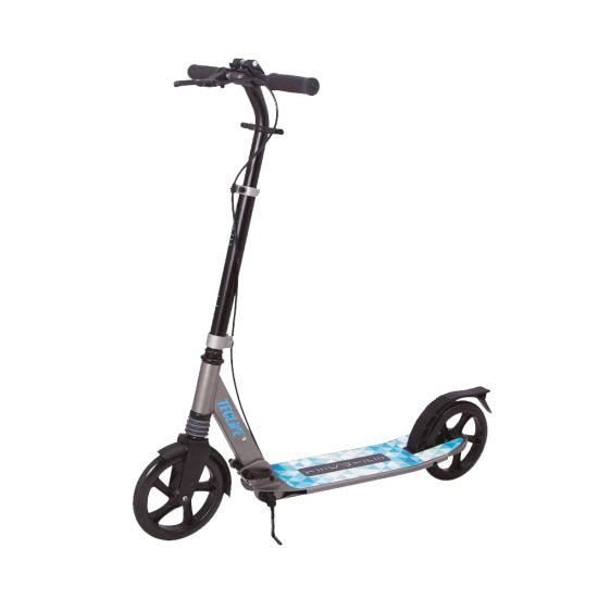 2 Wheels Foldable High Quality Kick Scooter