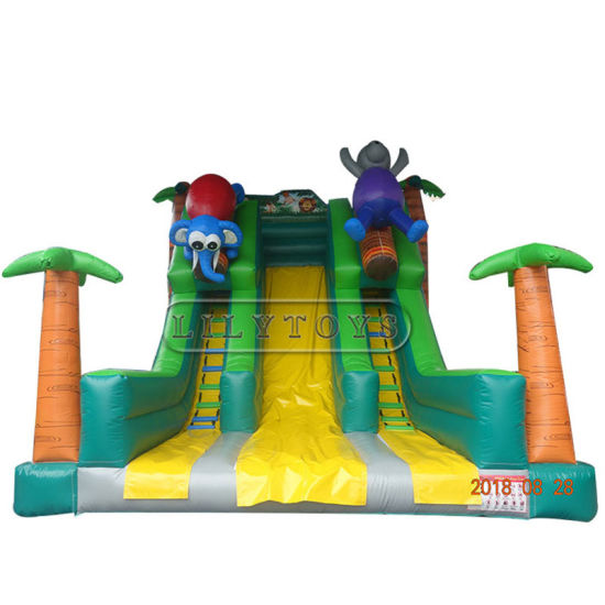 Inflatable Slide Kids Inflatable Bounce House Slide pictures & photos