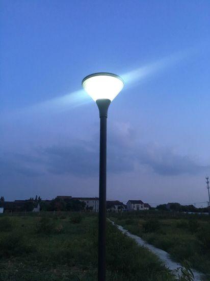 High Lumen Solar LED Lights Solar Garden Lights with Ce/RoHS/IP65 Certified