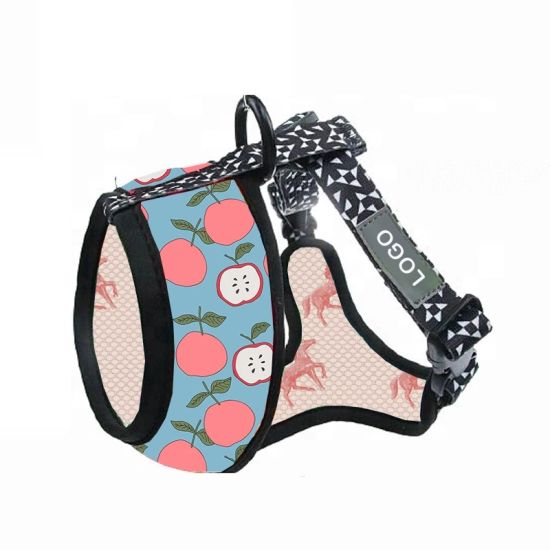 High Quality Customize Art Pattern Colorful Dog Harness/Color Dog/Colored Leash for Dogs