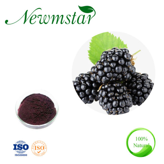 Food Grade Skin Care Mulberry Extract Anthocyanidins Supplement pictures & photos