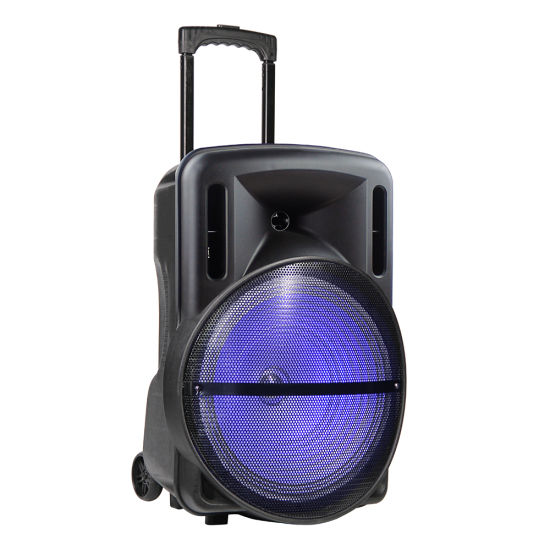 15inch Bluetooth Rechargeable High Power Trolley Audio Speaker with Microphone