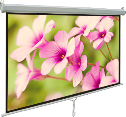 """100"""" Manual Projection Screen with Matte White Fabric No Curling and Stripes"""