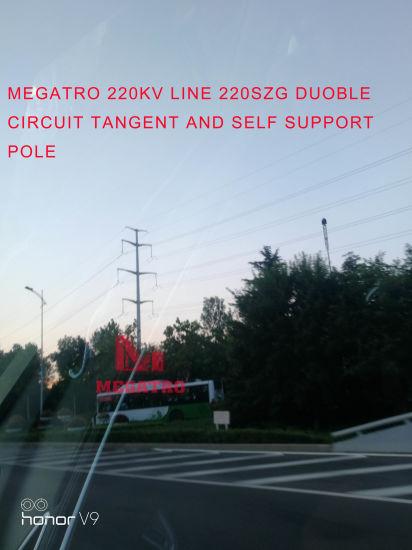 China Megatro 220kv Line 220szg DC Tangent and Electric Pylon