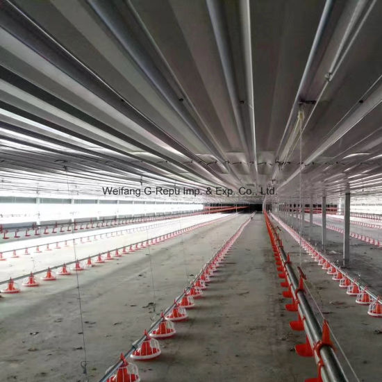 Automatic Full Set Poultry Farm Equipment for Raising Broiler, Breeder, Layer Chicken