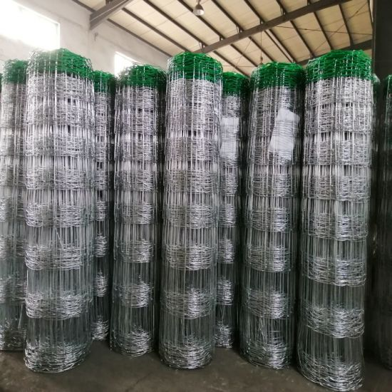 Hinge Joint Cattle Fence/Fence for Cattle & Sheep with Green Color PVC