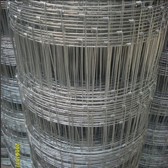 Metal Galvanized Wire Mesh Cattel Horse Fence for Sale pictures & photos