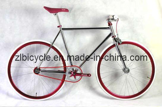 700c New Model High Quality Track Fix Gear Bike