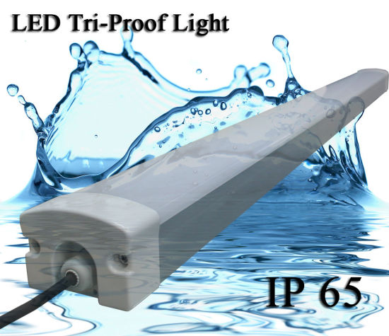 Water Poof IP65 Tri Proof 30W 40W 50W 60W 80W LED Tube Light