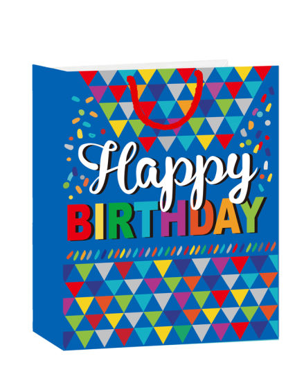 Gift Bag Custom Logo Printed /Recyclable Colorful Birthday Paper Gift Bag
