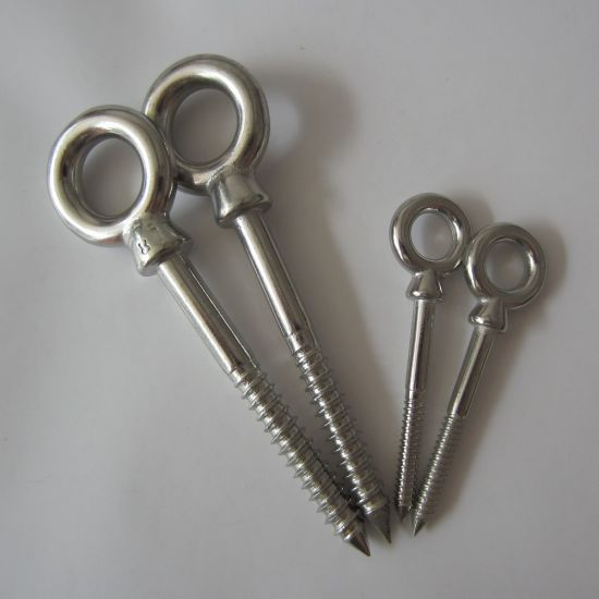 Stainless Steel Eye Bolt Wood Screw pictures & photos