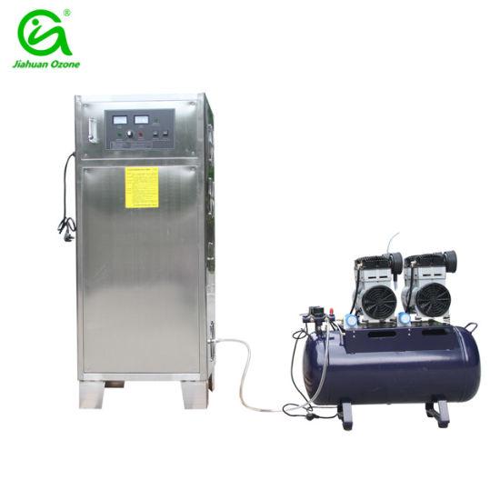 China 30g 50g Ozonizer Water Sterilization Ozonator for Fish