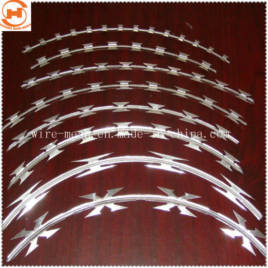 Security Fence Concertina Razor Wire
