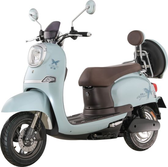 600W Powerful Retro Electric Scooter with Safe Brake (MH9)