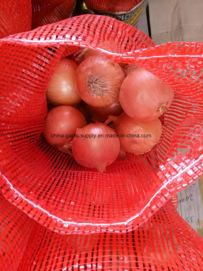New Crop Export Good Quality Chinese Red Onion Price pictures & photos