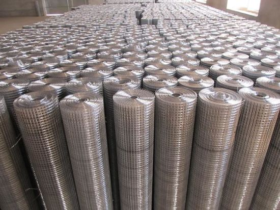 Galvanized Iron Welded Wire Mesh pictures & photos