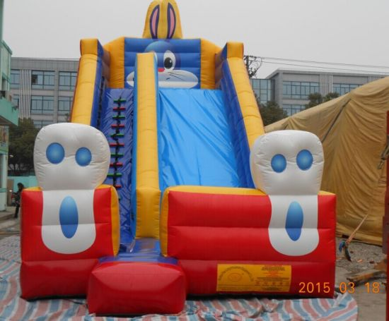 Amusement Park Custom Design 0.55mm PVC Tarpaulin Commercial Giant Inflatable Slide From The Original Manufacturer pictures & photos
