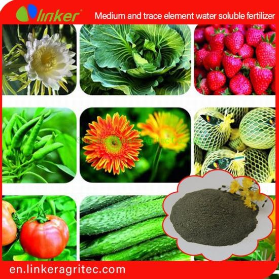 Linker Application Carbon Enzyme Technology Medium and Trace Element Water Soluble Fertilizer