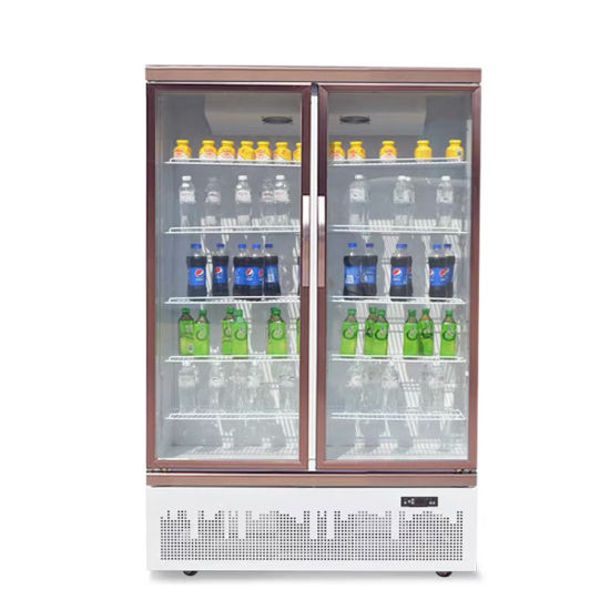 High Quality Good Price and Looking Upright Commercial Freezer