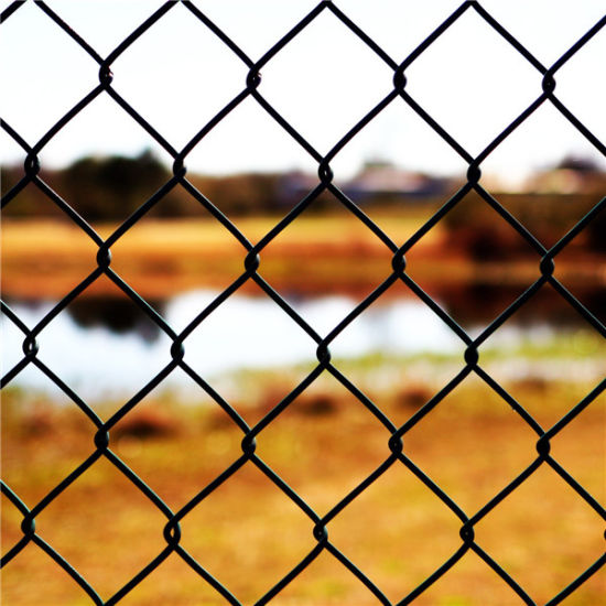 High Quality Galvanized/PVC Chain Link Fence pictures & photos