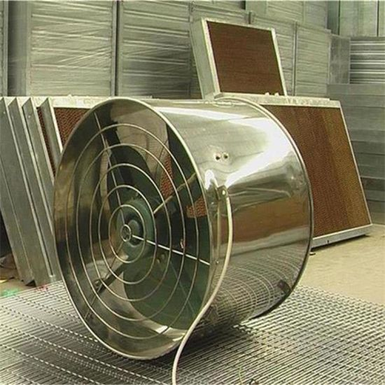 Hot Air Circulation Fans for Greenhouse Cooling System pictures & photos