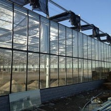 Single Span Plastic Film Agriculture Greenhouses Aluminium Profiles Greenhouse for Tomatoes/Flowers/Fruits/Vegetables/Garden