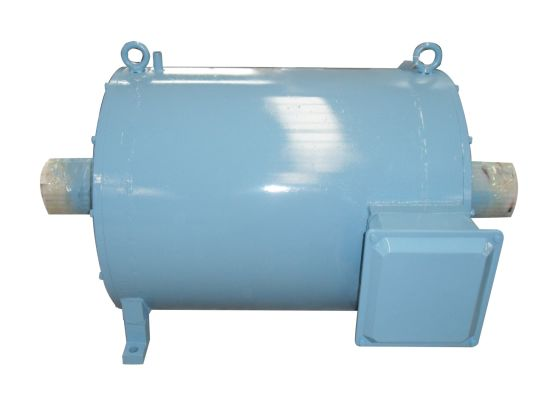 10kw Customized Double Shaft Synchronous Permanent Magnet Generator Pmg