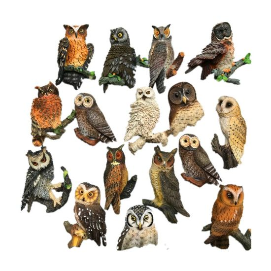 Polyresin Animal 3D Fridge Magnet of Resin Owl Magnet Crafts pictures & photos