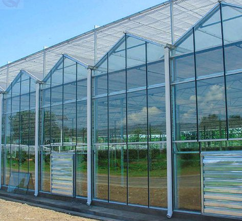 Venlo Type Solar Greenhouse with PC Sheet/Covering Film Agriculture equipment