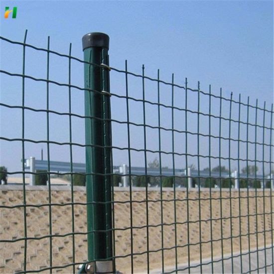 China Factory Supply PVC Coated Holland Wire Mesh/Euro Mesh Fence/Euro Fence