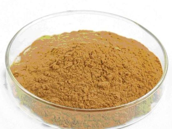 Factory Direct Supply 100% Natural Bitter Gourd Extract --Balsam Pear Concentrate Powder