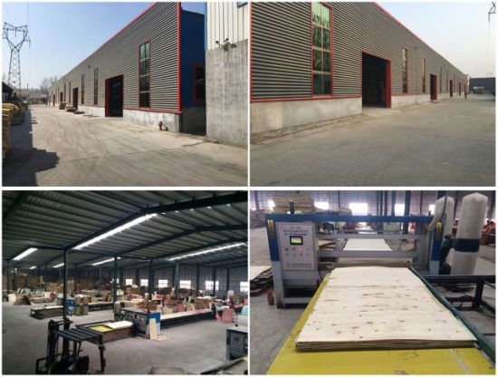 1220*2440mm China Construction Formwork Film Faced Plywood pictures & photos