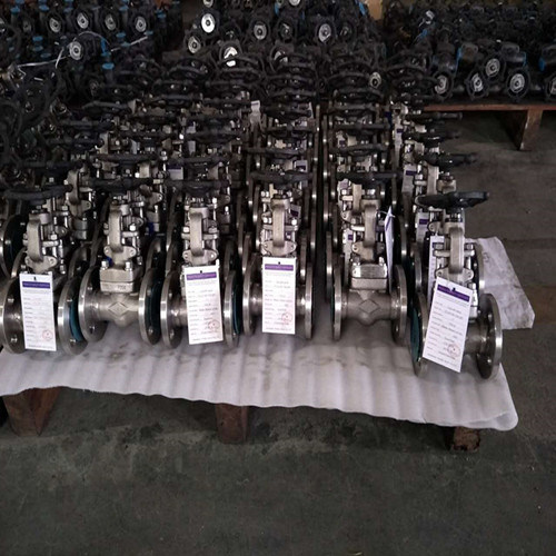 Forged Steel Through Way Flange Globe Valve pictures & photos