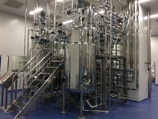 Customized Automatic Mechanical Stirred Stainless Steel Microbial Fermenter