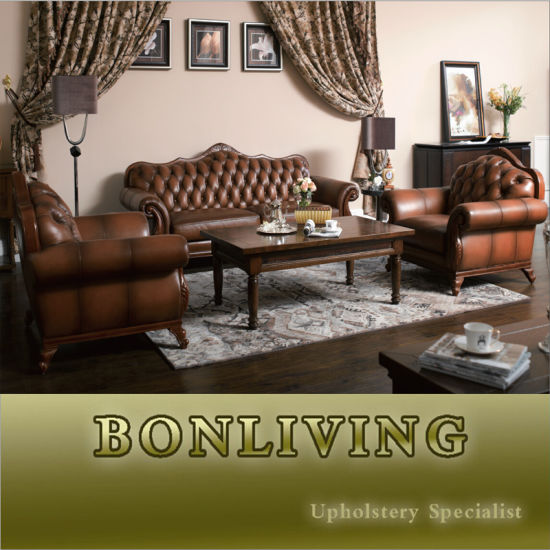 Classic Leather Sofa/Antique Leather Sofa/Chesterfield Leather Sofa (A14)